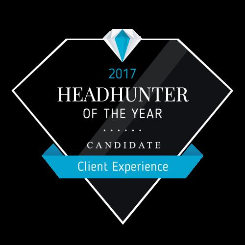 D-Level GmbH headhunter profile
